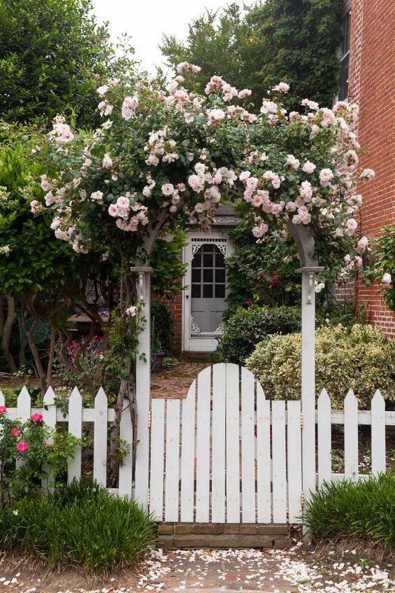 Unsere Rosengartenserie